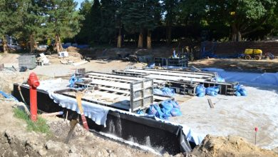 Trzy duże przedsięwzięcia w Parku Śląskim! Zobacz zdjęcia z budowy [FOTO] (fot. Park Śląski)