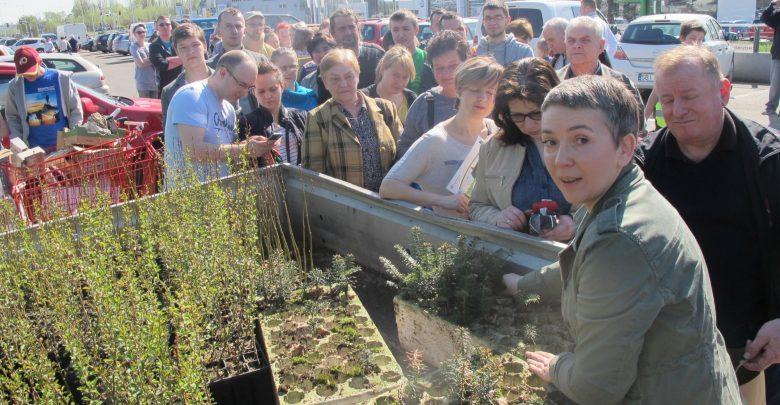 W Bielsku rozdadzą 9 tysięcy drzew i kwiatów. Fot. Fundacja Arka