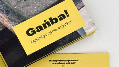 Śląskie: Czas na wymianę pieca! Od stycznia 2022 roku zakaz używania tzw. kopciuchów! (fot.UM Rybnik)