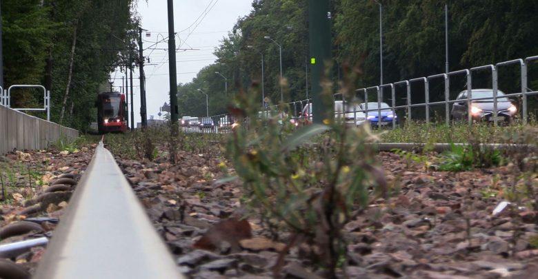 Katowice: Tramwaj na Południe pojedzie! Jest pozytywna decyzja środowiskowa ws. nowej linii
