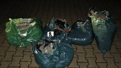 Funkcjonariusze z Nadodrzańskiego Oddziału SG zabezpieczyli w Wolsztynie19,5 kg marihuany o czarnorynkowej wartości ponad 2,3 mln zł (fot.Straż Graniczna)