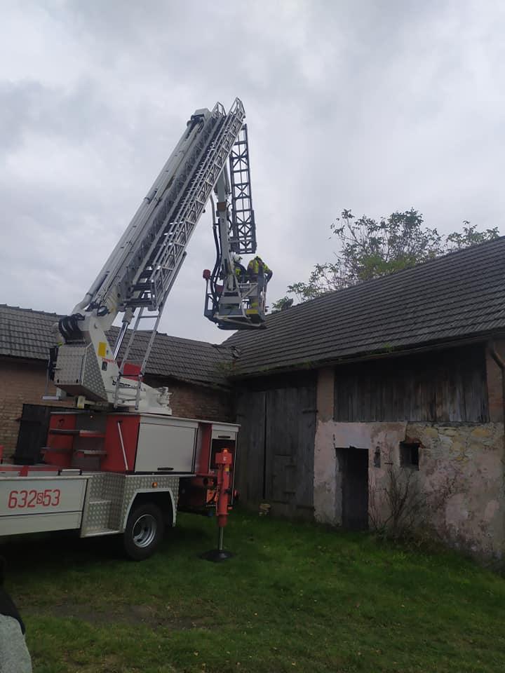 Strażacy z pełnym poświęceniem chcieli pomóc kotu, lecz ten ostentacyjnie zszedł ze stodoły o własnych siłach. [fot. OSP Ożarowice]
