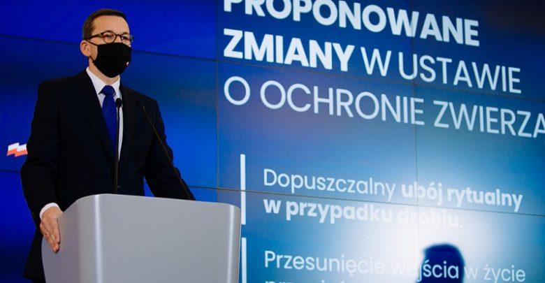 Zmiany w ustawie o ochronie zwierząt. Premier podał szczegóły (fot.premier.gov.pl)