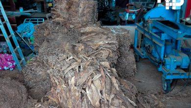 KAS i policja zlikwidowali garażową krajalnię tytoniu. Fot. KAS Śląsk