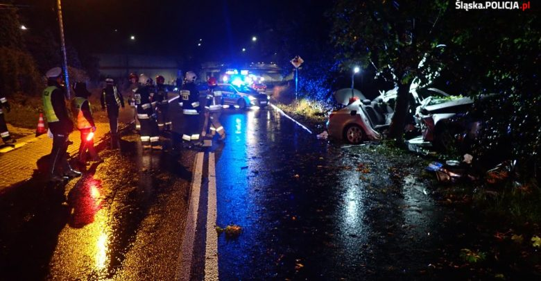 Rybnik: Kierowca BMW uderzył w drzewo. Zginęła 19-latka (fot.Śląska Policja)