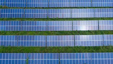 W Gliwicach powstała jedna z największych miejskich instalacji fotowoltaicznych. (fot.poglądowe - pexels.com)