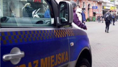 Straż miejska z Katowic idzie na wojnę z nielegalnym handlem na Stawowej. Fot. Straż Miejska w Katowicach