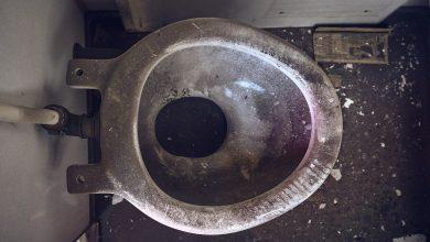 Czy dzieci z Rybnika naprawdę sikają węglem? Prof. Tim Nawrot wywołał prawdziwą burzę! (fot. pixabay.com)