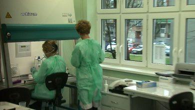W Katowicach, Gliwicach i Sosnowcu sprawdzają, kto już miał koronawirusa. Ruszają badania!