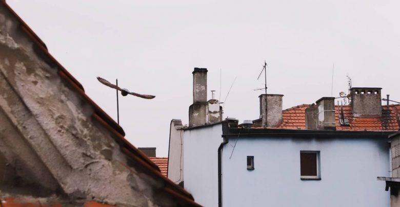 Pszczyna chce mieć stację pomiaru powietrza. Złożyła wniosek. Fot. UM Pszczyna