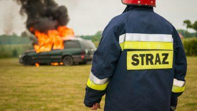 Zdjęcie poglądowe: źródło pexels.com - Szokującego odkrycia dokonano w Podolszu, w gminie Zator w Małopolsce. Nad ranem w wypalonym wraku samochodu znaleziono zwęglone zwłoki mężczyzny