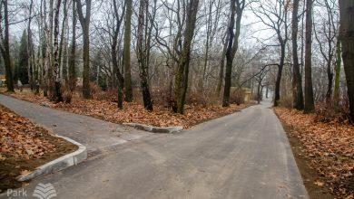 Kolejny etap modernizacji Parku Śląskiego zakończony. Alejki odnowione (fot.Park Śląski)