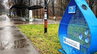 """Sosnowiec: wrzuć nakrętkę do """"kropelki"""" i pomóż w rehabilitacji Jasia. Fot. Sosnowiec.pl"""
