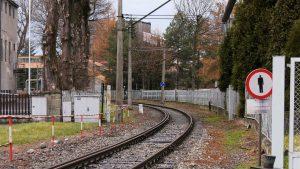 Fiaskiem zakończyły się negocjacje aktywistów ze starostwem i PKP PLK w sprawie wycinki drzew przy rewitalizowanej linii kolejowej Cieszyn – Goleszów