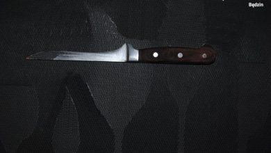 Śląskie: Ugodziła partnera nożem. Grozi jej 10 lat, ale on też usłyszy zarzut (fot.Śląska Policja)