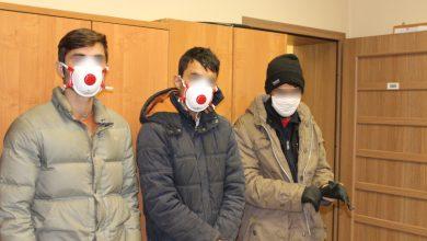 Zamiast bombek trzech Afgańczyków. Ukrywali się wśród choinek [WIDEO]. Fot. Śląska Straż Graniczna