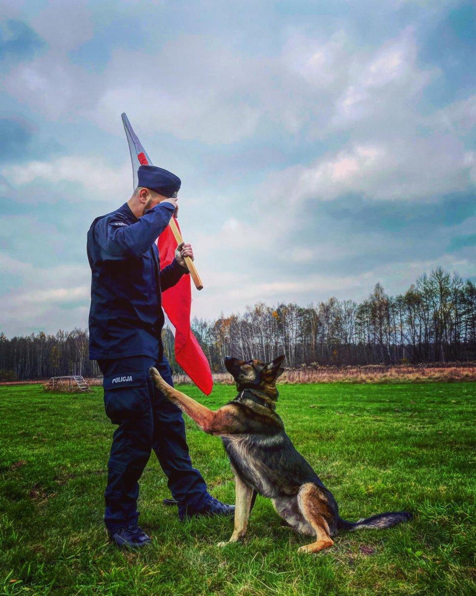 Przyjrzyjcie mu się dobrze. To Otok – nowy postrach bandytów w Tarnowskich Górach! Fot. Policja Śląska