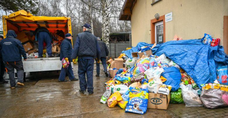 Piękny gest szkół z Częstochowy. Zebrali ponad 3,5 tony karmy dla zwierząt. Fot. UM Częstochowa