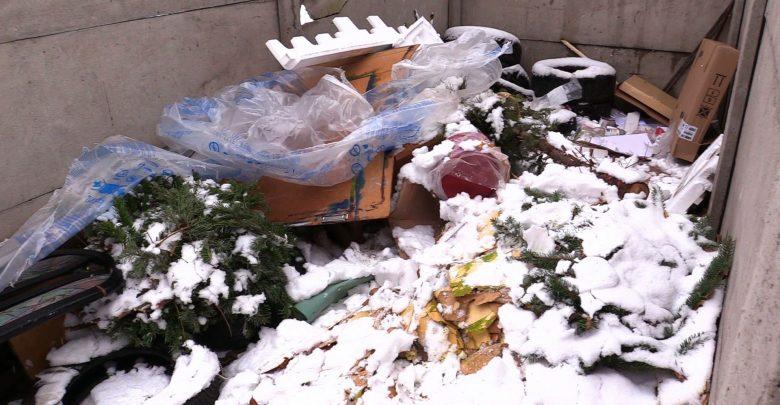 Osiedlowe śmietniki wyglądają jak las. Choinek po świętach przybywa z każdym dniem