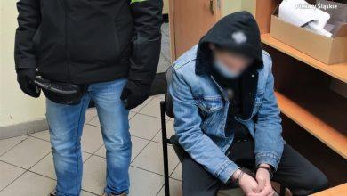 Dziś sąd rodzinny zadecyduje, co dalej z zabójcą 13-letniej Patrycji (fot.Śląska Policja)