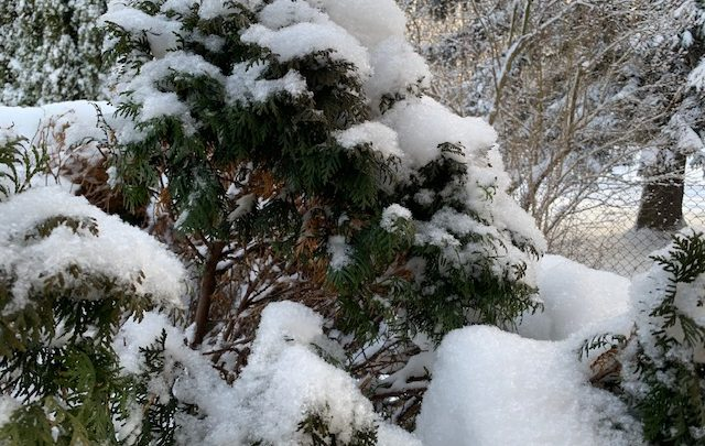 -30,8 stopnia Celsjusza! Gdzie dziś w Polsce jest najzimniej?