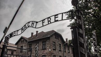 0,5 miliona odwiedzających w Auschwitz. To pięć razy mniej niż rok temu. Fot. pixabay.com