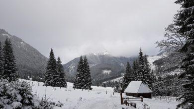 Mgła, śnieg, oblodzenia. Trudne warunki na szlakach w Tatrach (fot.poglądowe/www.pixabay.com)
