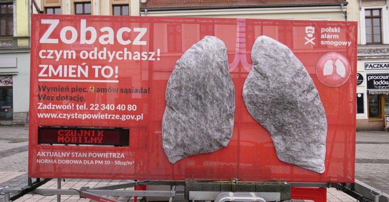 Płuca, które pierwotnie miały kolor biały, już po kilku dniach przybrały kolor szary co wyraźnie wskazuje na wysoki poziom zanieczyszczeń w powietrzu