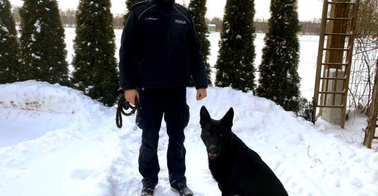 Pijany kierowca salwował się ucieczką do lasu. W pogoń za nim ruszył policjant z psem (fot.policja)
