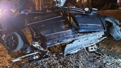 Uderzyli w znak, później w drzewo. Kierowca i pasażer passata zginęli na miejscu (fot.Policja Lubelska)
