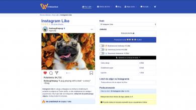 Czy warto kupić like na Instagramie - Poradnik zakupowy (fot.materiały partnera)