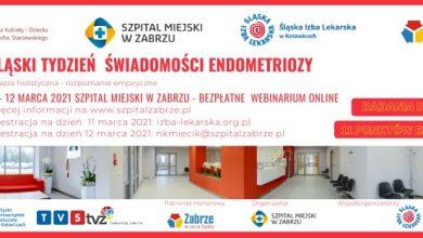 WAŻNA konferencja dla chorych na endometriozę