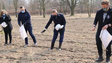 Częstochowa sieje łąki kwietne na powitanie wiosny. Fot. UM Częstochowa