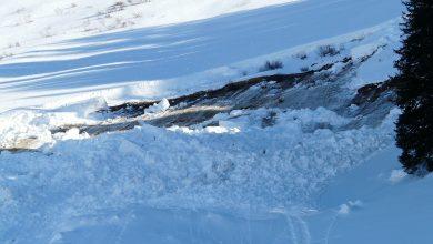 Lawina w Tatrach porwała trzy osoby! Skialpiniści zjeżdżali Doliną Młynicką (fot.pixabay.com)