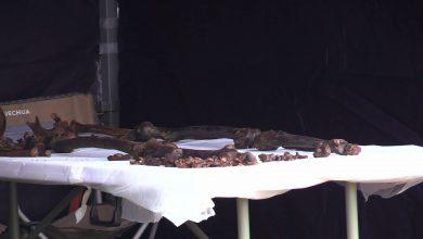 Na cmentarzu w Katowicach odkopano bezimienne szczątki dwóch osób