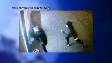 W Żywcu rzucali kamieniami w jubilera, w Buczkowicach wdarli się do sklepu. Włamywaczy nagrał monitoring