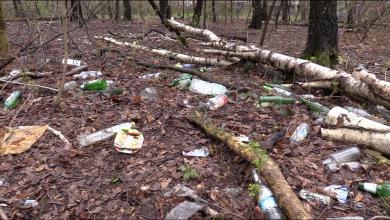 Podobnie jak w wielu innych takich miejscach, śmieci jest bardzo dużo. Jak mówią uczestnicy akcji, częściowo za taki stan odpowiada młodzież, która często organizuje tu imprezy.