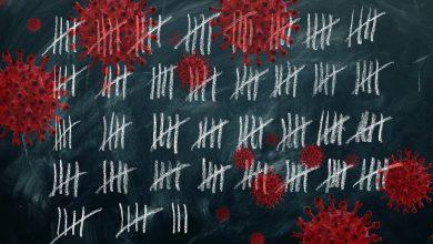 Zmarło 740 osób zakażonych koronawirusem! Najnowszy raport resortu zdrowia (fot.poglądowe/www.pixabay.com)
