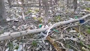 Przy ujściu rzeki Soły do Jeziora Żywieckiego ujawniono tysiące plastikowych odpadów, które jak mówią strażnicy zalegają na terenie wielkości boiska piłkarskiego