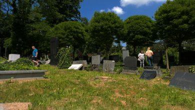 Ogrom zniszczeń jest straszny! Ktoś w szabat zrównał z ziemią cmentarz żydowski w Bielsku-Białej!