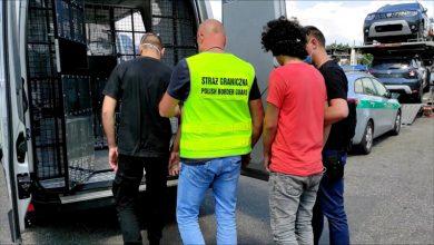 Nowe auta przyjechały na lawecie do Gliwic. W nich siedzieli... nielegalni imigranci [WIDEO]. Fot. Śląska Straż Graniczna