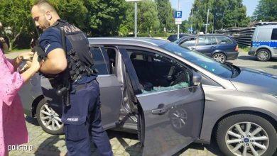 Pies w nagrzanym aucie. Właścicielka czworonoga nie widziała w tym nic złego (fot.policja.pl)