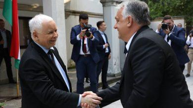Jubileuszowy szczyt premierów państw Grupy Wyszehradzkiej. Jarosław Kaczyński spotkał się z Viktorem Orbanem (fot.KPRM)