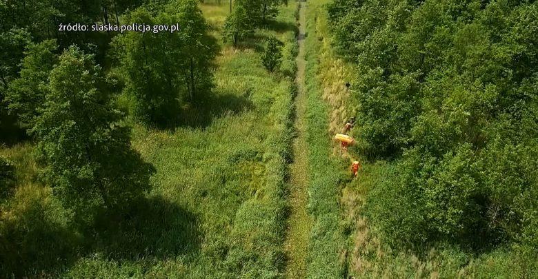 Poszukiwana kobieta w Tychach odnaleziona. Ugrzęzła w leśnym strumieniu