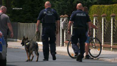 Ani martwego, ani żywego. Policyjne psy nie znalazły nikogo. Trwa obława na zabójcę z Borowców