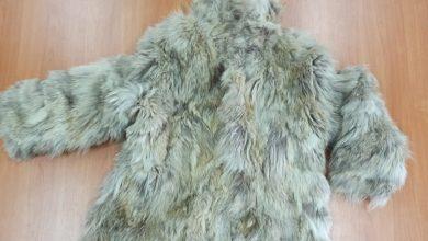 Chciał sprzedać w internecie futro z wilka kanadyjskiego. Przejęła je policja. Fot. KMP Katowice