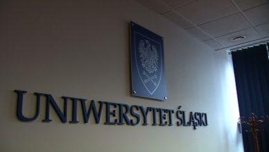 Na których kierunkach na UŚ chce studiować najwięcej osób? Zobacz listę