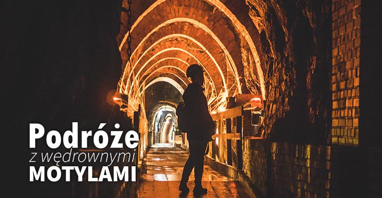 Podróże z Wędrownymi Motylami - Śląsk szlakiem Zabytków Techniki, sob. 10.00, nd. 09:40