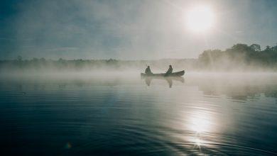 Dramat na jeziorze. Wyłowiono zwłoki 2,5-letniego chłopca. Fot. pixabay.com