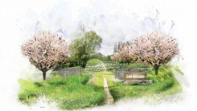 Tychy: Na osiedlu B powstanie sad owocowy (fot.UM Tychy)